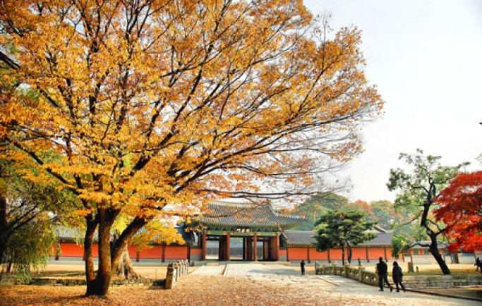 Điều kiện cấp visa du học Hàn Quốc