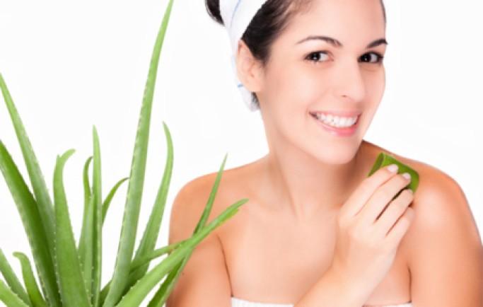 Sử dụng cây nha đam để làm đẹp da mặt