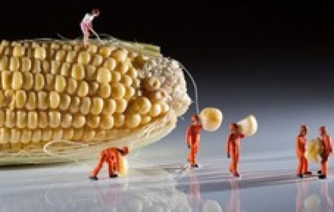 Thực hư về 'siêu thực phẩm' chống lại ung thư